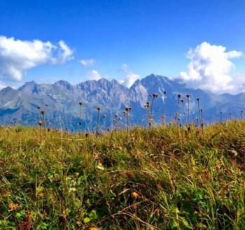 Mountain Coglians