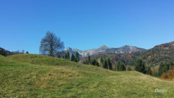 Carnic hills