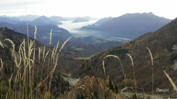 Tagliamento valley